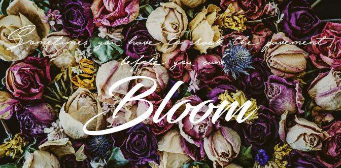 """Todo lo que tienes que saber sobre """"BLOOM"""""""
